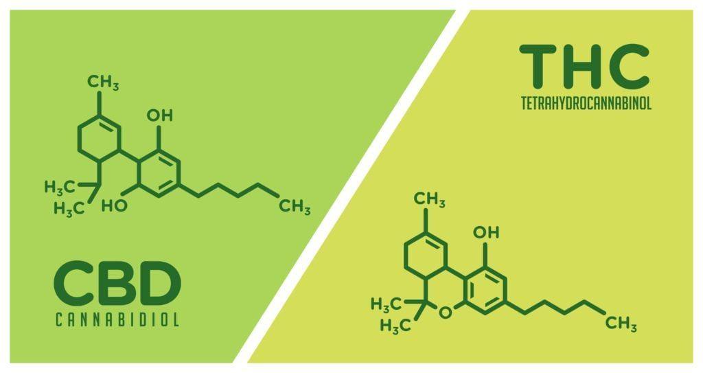 CBD and THC molecules