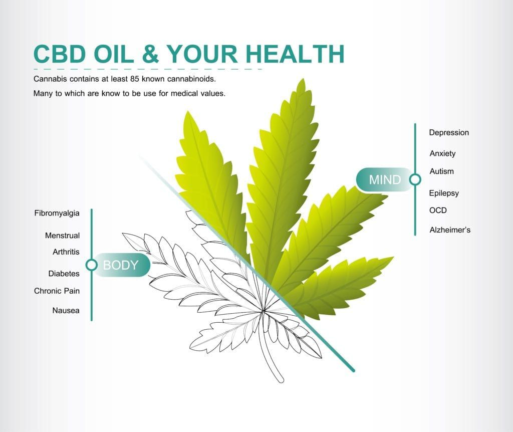 CBD oil and your health infographic